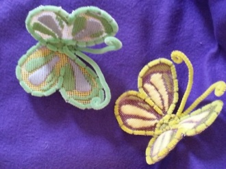 Jnrs butterfly sm